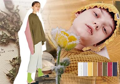 原生--女裝毛衫(中大淑)色彩趨勢